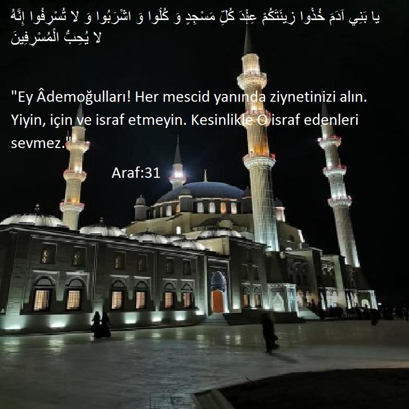 ALLAH'IN MESCİDLERİ